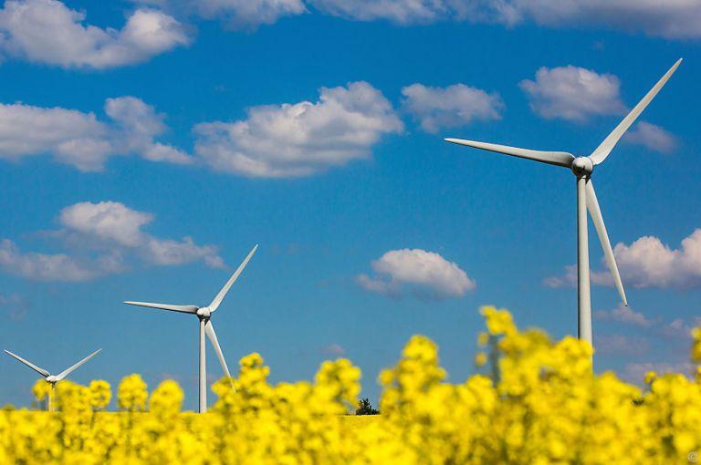 Koalition: Umweltforscher fordern Bekenntnis zu Nachhaltigkeitszielen