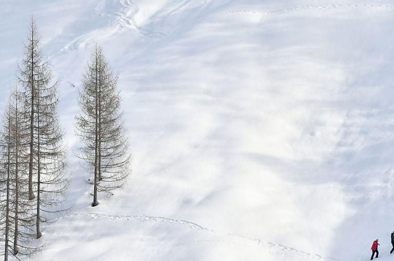 Geringe Schneedichte erhöht Überlebenschance von Lawinenopfern