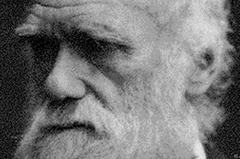 Forscher: Darwin war eines der ersten Boulevardblattopfer Österreichs