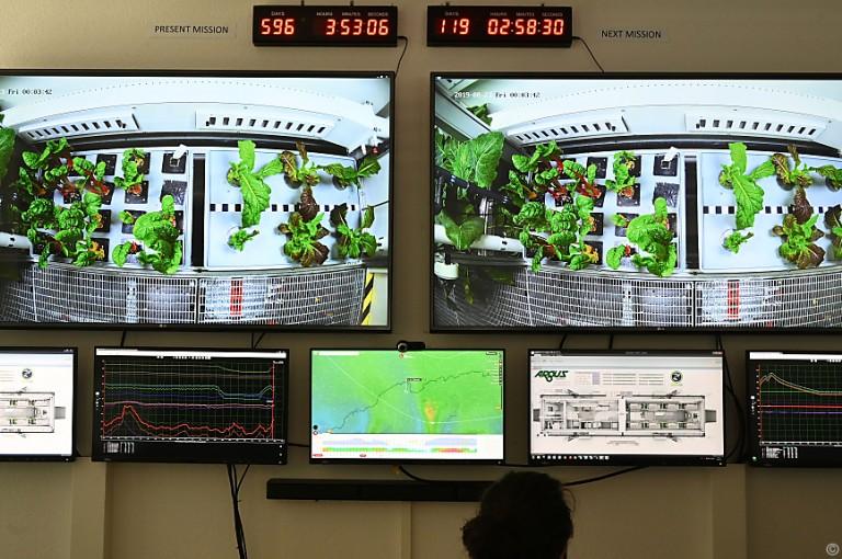 Weltraum-Gewächshaus soll Obst und Gemüse für Astronauten liefern